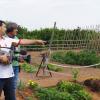 Centro de jardineria en Valencia