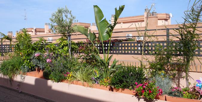 Riego automático para patios y terrazas